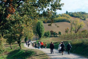 Itinerario alla scoperta del gusto e del territorio - Una rete di Pro Loco nella Provincia orientale di Bologna
